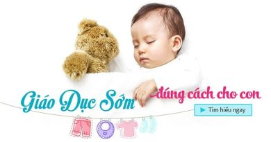 Combo Bộ 4 khóa học giáo dục sớm cho trẻ