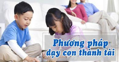 Phương pháp dạy con thành tài
