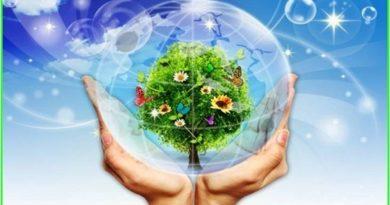 Cứu lấy môi trường và cơ hội cho bạn