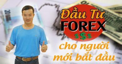 Đầu tư Forex cho người mới bắt đầu