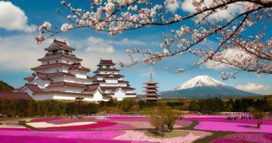 Học tiếng Nhật theo giáo trình Minna no Nihongo ( Bài 16 - 20)