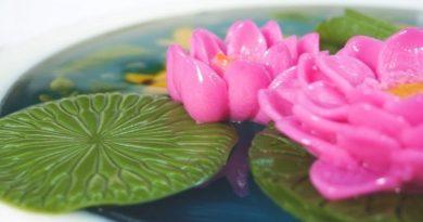 Hồ cá hoa sen với thạch rau câu 3D kết hợp hoa nổi