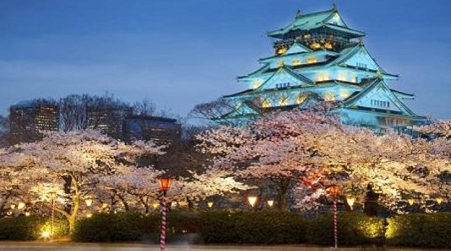 Trọn bộ 5 khóa học tiếng Nhật toàn diện