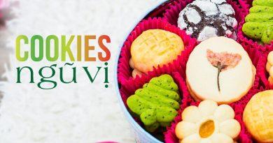 Cookies ngũ vị – hộp bánh quy 5 vị ngon từ khi chưa nếm