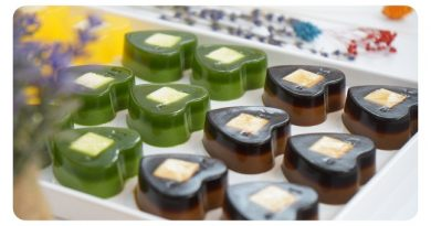 3 món rau câu siêu hot của Lan Nghi dùng để kinh doanh